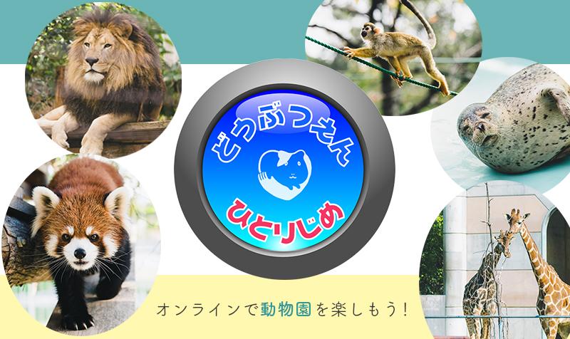 オンラインで動物園を楽しもう!